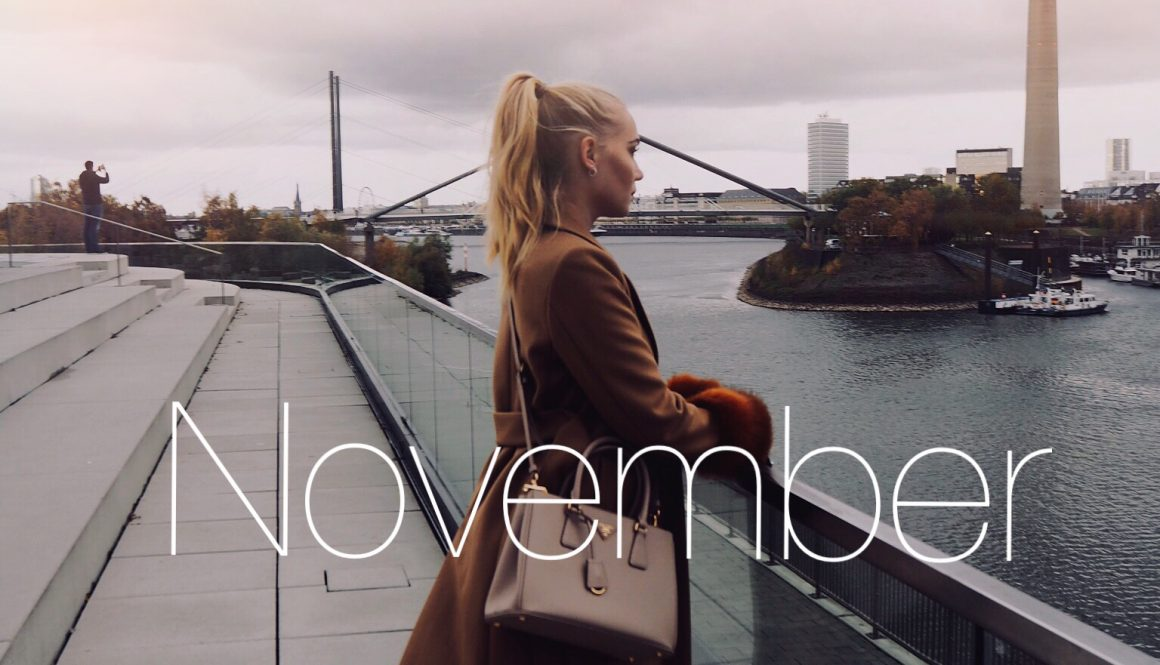 Monthly Review – November