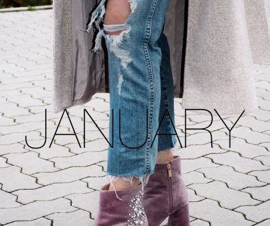 Monthly Review – January